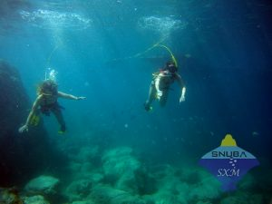 Snuba Divers go under