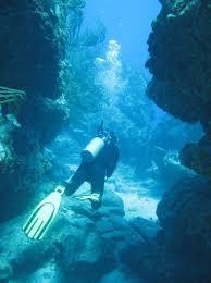PADI Rescue Diver Wanted for SNUBA adventure at SNubA St Maarten