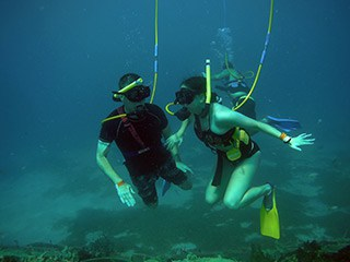 Example easy diving (snuba) pictures